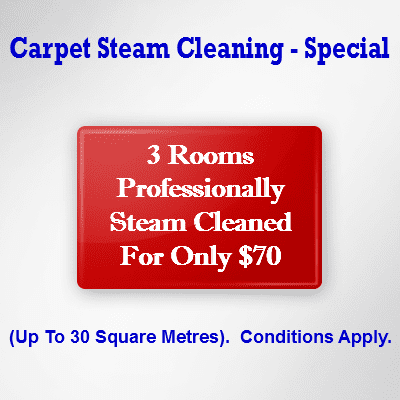 Carpet Steam Cleaning - Special
